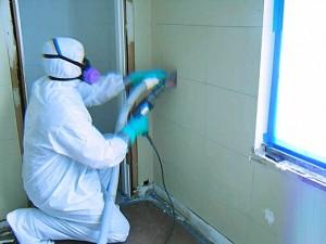 Hepa Vacuum Lead Paint Removal
